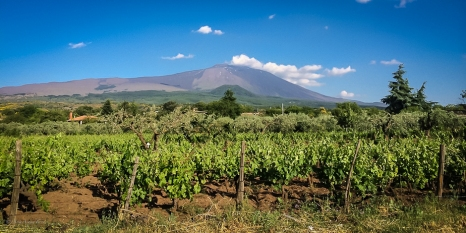 Etna versante Nord