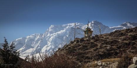 Himalaya blog-1-9